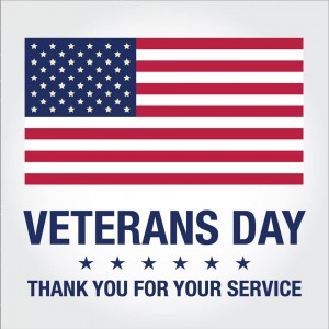 Thank you to all our Veterans here in the USA and across the World!